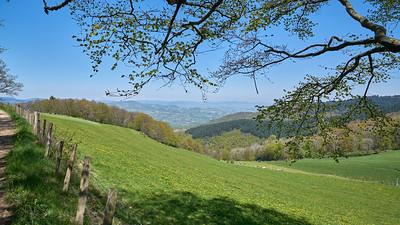 "Courzieu La Brevenne - 45°43'27"" N 4°35'23"" E - 819,6m (Yzeron - Auvergne-Rhône-Alpes)"