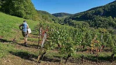 20190929 Jujurieux randonnée (Jujurieux/Auvergne-Rhône-Alpes/France - N46°02.222' E5°25.775' - Altitude : 399.40)