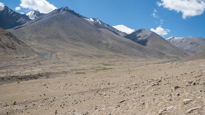 Between Hunder and Wari La pass