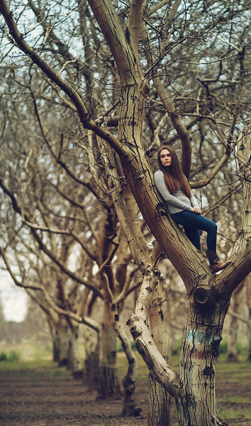 Tori - Senior Photography- PErfect Climbing Tree- Childhood in the Country - Linden - California