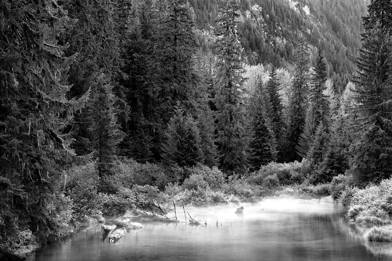 Fish Creek, Alaska, USA