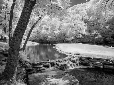 Allen_G7_Travel_Dogwood Cyn IR P1290612