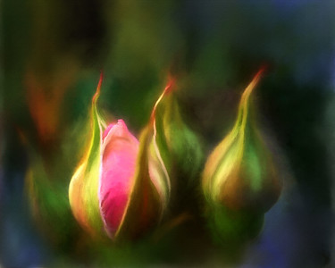 Allen_G9_Floral_BUDS painted