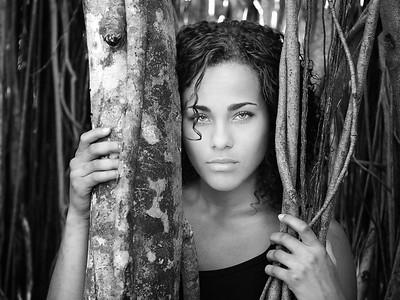 Jasmine jungle
