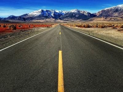 FollowYourBliss road