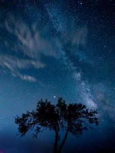 Carlsbad Milky way 1013477