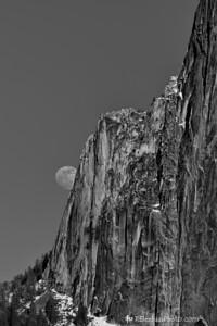 Peekaboo Moon