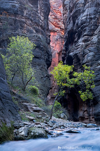 Virgin River Narrows IV