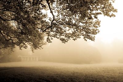 autumn_15_012
