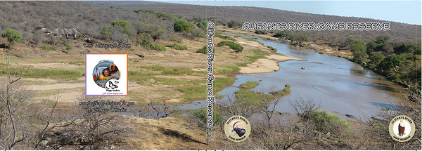 12x18 - Cover - Olifants - WEB
