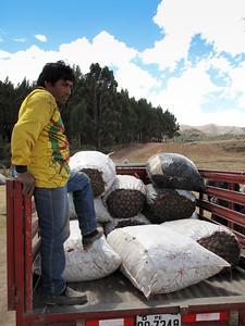 The neighborhood of Cusco