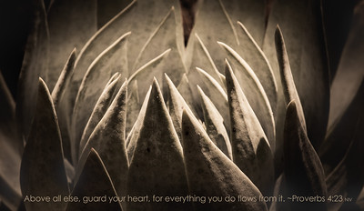 137-guard your heart