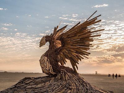 223-PhoenixRising P1000363