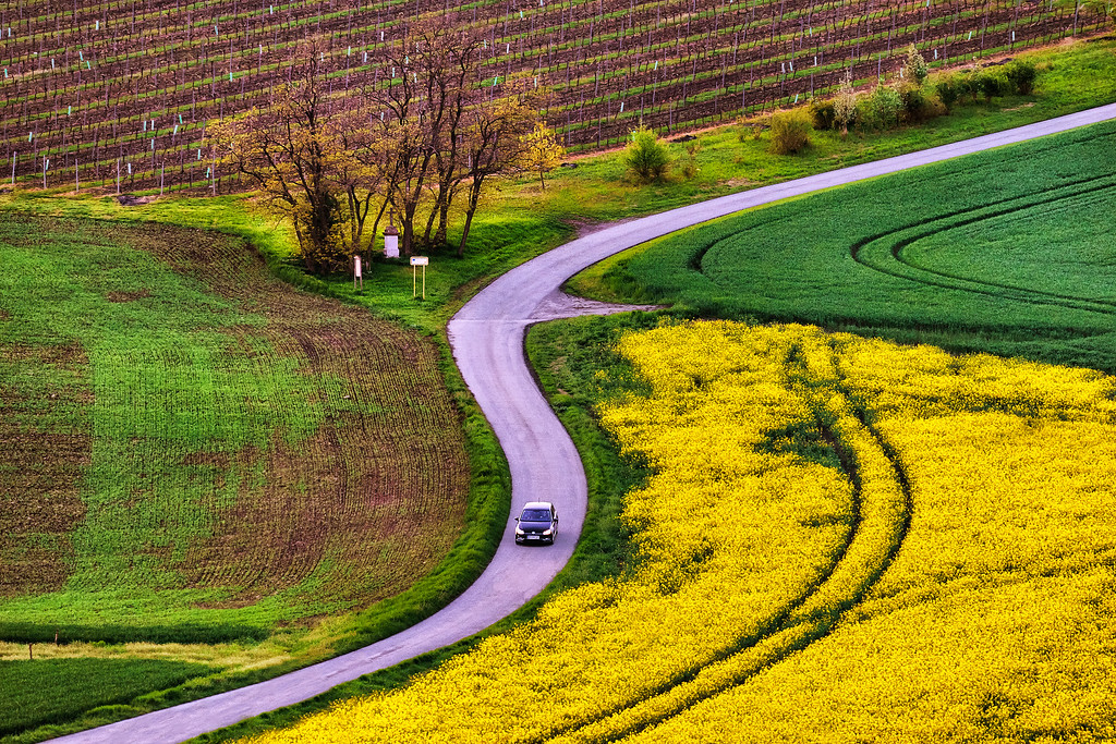 S curved road, Moravian Tuscany, Czech Republic