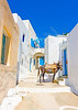 Typical beautiful narrow road with a mule in Langada a vilage of Amorgos island in Greece