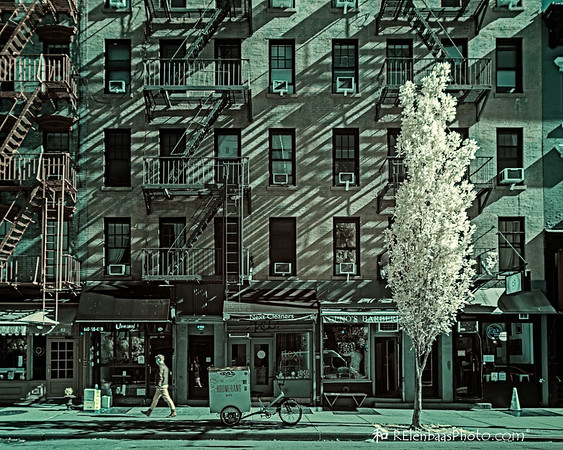 A Tree Grows in......the West Village?