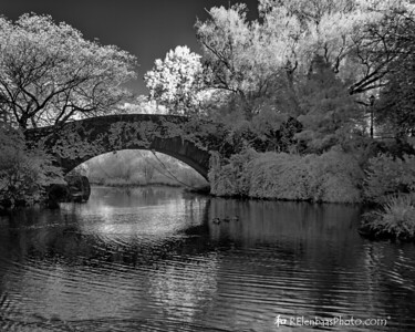 The Gapstow Bridge