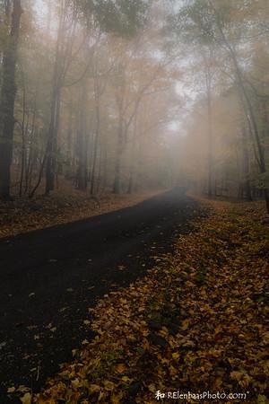 Olana Fog