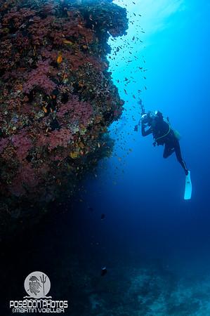 Underwater Photographer Frozen in Motion
