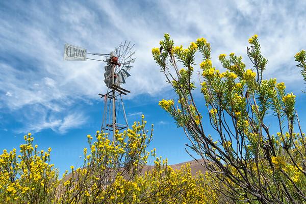Windmills\Windpompe