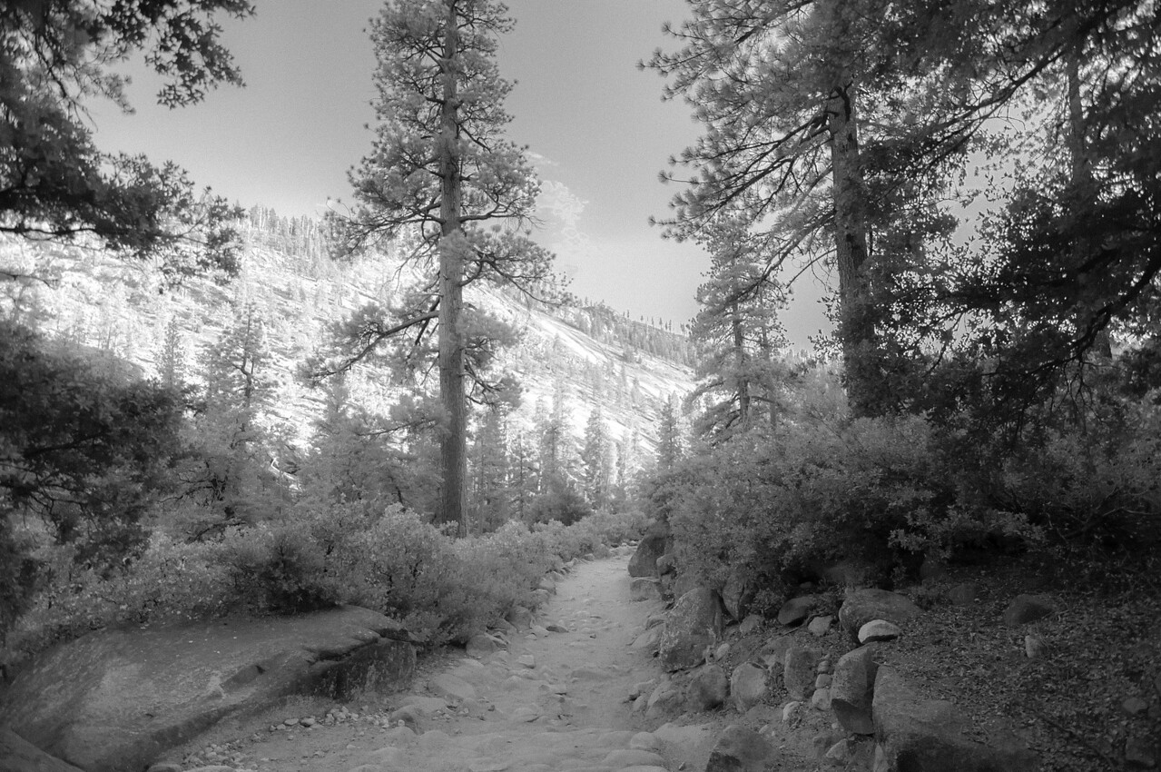 TRAIL DREAMS B&W