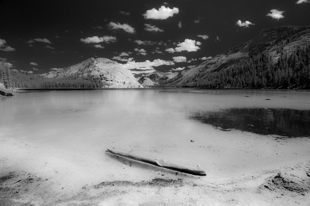 TENAYA LAKE BLACK & WHITE