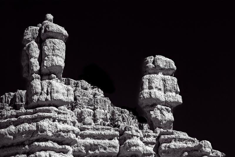 2009 Desert1-045