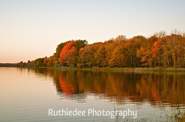 Evening on the Nip~