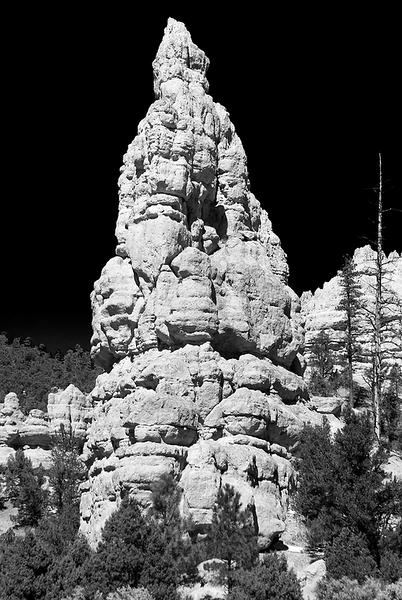 2009 Desert 1-1-34