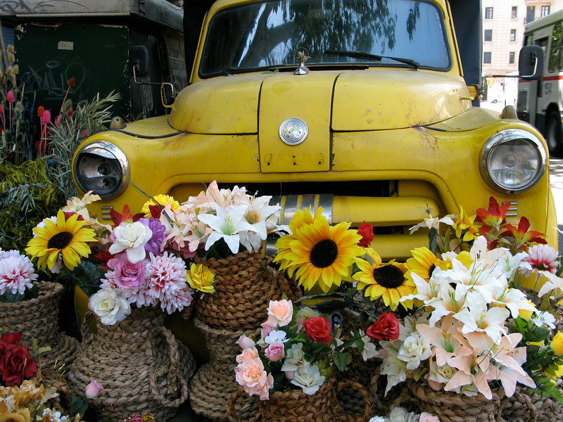 Flowers in the Street Market, Montevideo, Uruguay