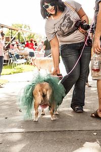 Dogtober Festival Beaumont, Tx.