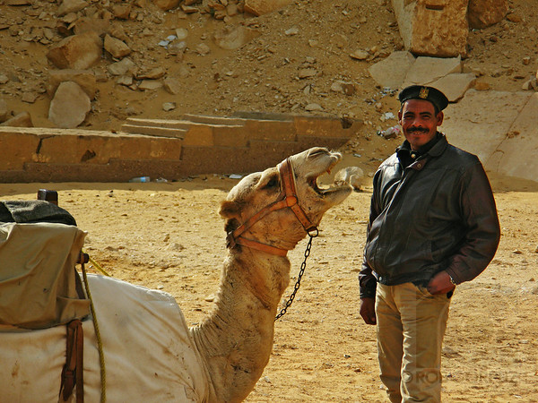 CAMEL AND MAN - Dashur, Egypt