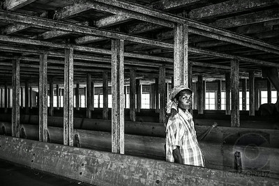 WORKER AT TEA FACTORY - Munnar, India