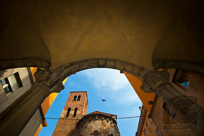 A BIRD FLIES OVER LUCCA - Lucca, Italia