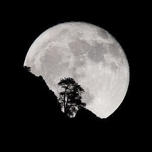 Full Moon in Zion