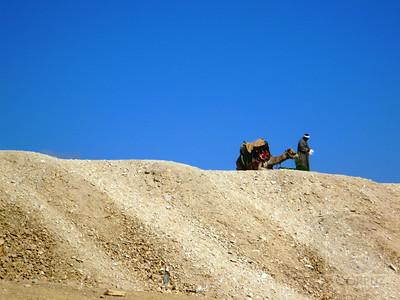MAN AND CAMEL - Giza, Egypt
