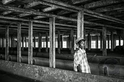 WORKER AT TEA FACTORY - Munnar, India