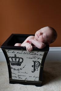 Logan Newborn-28