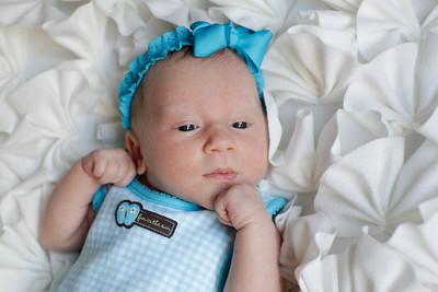 Logan Newborn-22