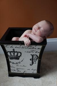 Logan Newborn-30