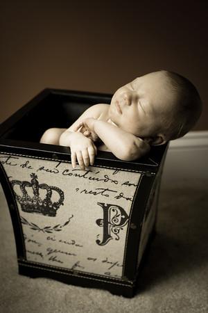 Logan Newborn-27