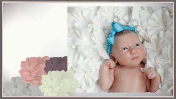 logan newborn