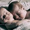 Ashton & Brodie 7