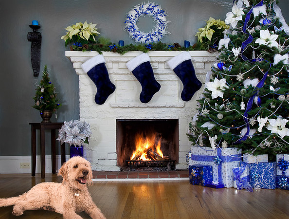 Fireplace-Christmas-Blue