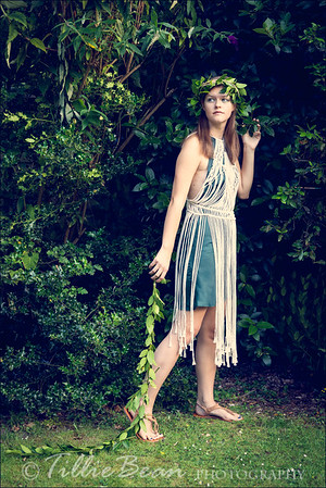 Daphne and the Laurel Tree