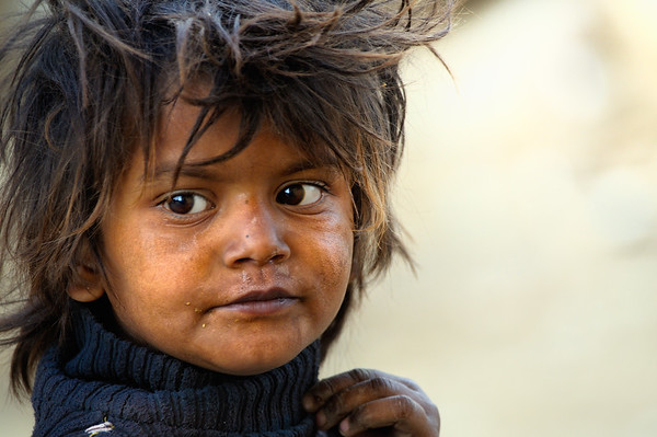 The Urchin - India