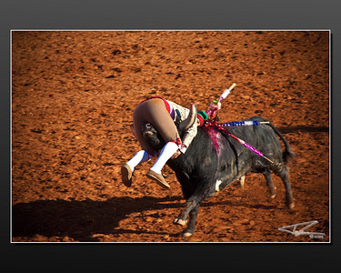 Tourada- BullFight