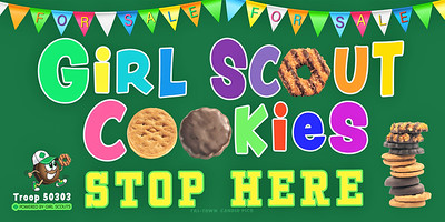 6x3  FOR SALE GIRL SCOUTS  Banner-Recovered
