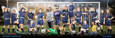 12X36 SOCCER GIRLS 2019-20 Team Pano