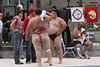 WWE, SUMO WRESTLING & TUG OF WAR COMPETITIONS : 1 gallery with 481 photos